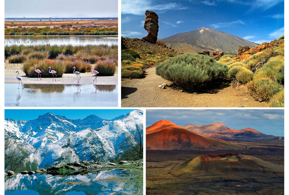 Descubre 5 Parques Nacionales accesibles para PMR